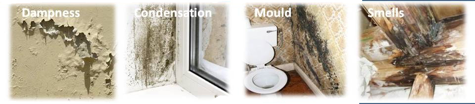 dampness condensation and mould